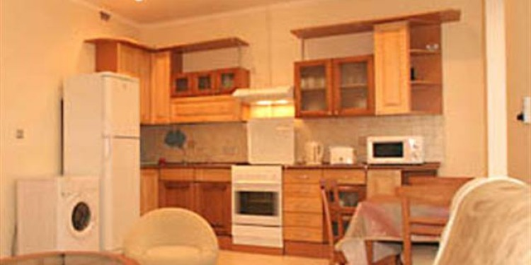 2-bedroom Apartment Sankt-Peterburg Tsentralnyy rayon with kitchen for 5 persons