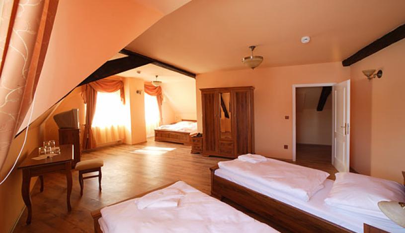 Palac U Kočků Praha - Apartment (4 persons)