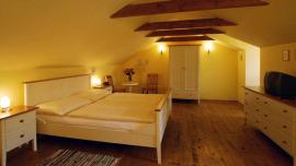 Hotel U Suteru Praha - Double room