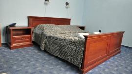 Villa Andy Praha - Dvojlôžková izba s manželskou posteľou alebo 2 oddelenými lôžkami