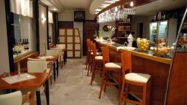 WELLNESS HOTEL SYNOT*** Uherské Hradiště